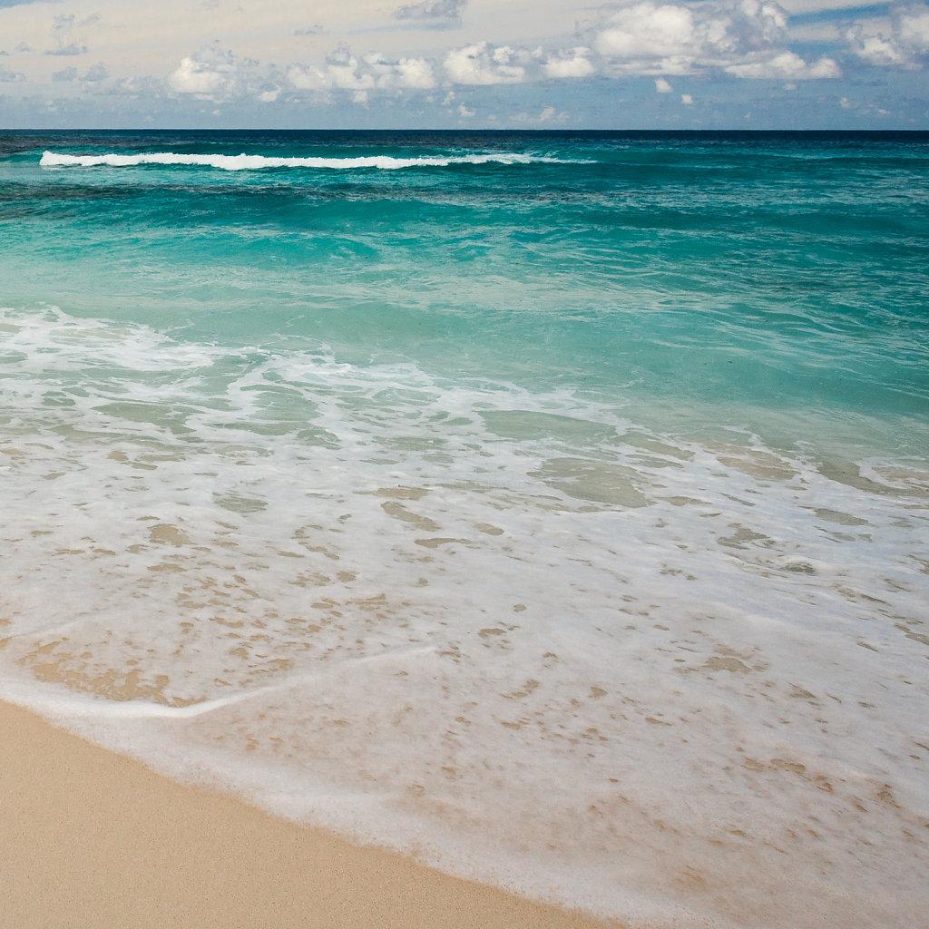 Anse Cocos (La Digue)